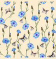 cornflower and butterfly floral seamless pattern vector image vector image