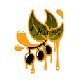 olive oil drips and black olives icon vector image vector image