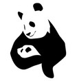 panda with a little baby vector image vector image