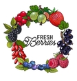 Round frame of garden berries with place for text vector image