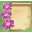 Vintage background with flower orchid and paper vector image
