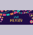 viva mexico - mexican fiesta banner and poster vector image vector image