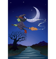 A witch travelling with her broomstick in the vector image vector image