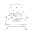Beautiful vintage chair and a cute cat vector image