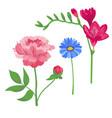cartoon petal vintage floral bouquet garden vector image vector image