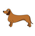 cute cartoon dachshund isolated on white vector image vector image