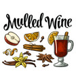 mulled wine with glass and ingredients vector image vector image