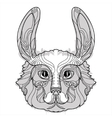 Rabbit head doodle with black nose vector image vector image