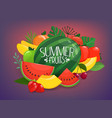 summer fruits group color fruits apple vector image