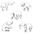 Elephants A sketch by hand Pencil drawing vector image vector image