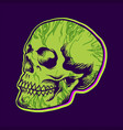 hippie green skull texture vector image vector image