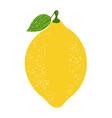 lemon vector image