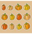 Pumpkin Icons vector image vector image