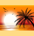 silhouette palm tree on beach vector image vector image