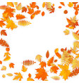 frame with red orange brown and yellow falling vector image vector image