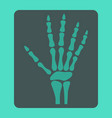 hand x-ray flat icon medicine and healthcare vector image