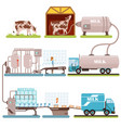 production of milk set milk industry cartoon vector image vector image