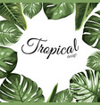 tropical design border frame element green vector image vector image