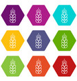 wheat icons set 9 vector image vector image