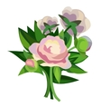 Beautiful delicate bouquet with pink flowers vector image vector image