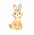cute brown rabbit vector image vector image