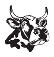 cute spotted abstract portrait bull vector image vector image