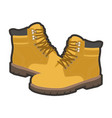 high warm shoes vector image vector image