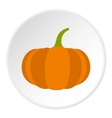 Pumpkin icon flat style vector image vector image