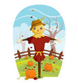 scarecrow for fall harvest vector image