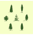 set of hand drawn sketch trees - pine fir vector image vector image