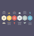 timeline hexagons infographic diagram vector image vector image