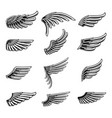 vintage wings icon set01 vector image vector image