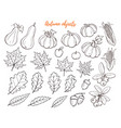 autumn objects set vector image vector image