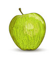 digital painting of apple vector image