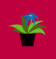 flat shading style icon flowering pot vector image vector image