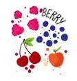 hand draw berries set strawberry cherry vector image vector image