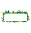 horizontal frame tropical leaves around a vector image