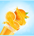 orange juice splash with glass and orange fruit vector image