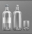 vodka glass bottle realistic filled alcohol pack vector image