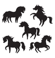 Cartoon horses silhouettes on white background vector image