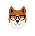 akita inu dog cute dog in glasses vector image vector image