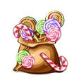 Bag with colorful spiral lollipops sweets vector image