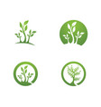 logos of green tree leaf ecology vector image vector image