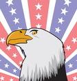 Orao US zastava vector image vector image
