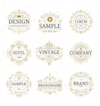 set vintage luxury logo templates vector image vector image