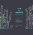 sketch linear cactus ans succulents vector image vector image