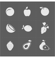 White Fruit Icon Set on Grey Background vector image