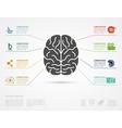 brain concept infographic vector image