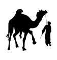 Camel silhouette black vector image