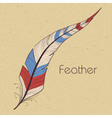 Colorful feathers vector image